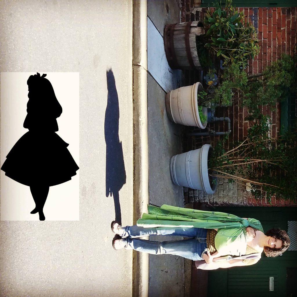 Didymos Sycamore Alley Woven Baby Wrap   Birdie's Room